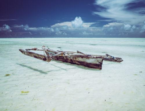 Zanzibar – co warto zobaczyć, KOSZTORYS + FOTORELACJA