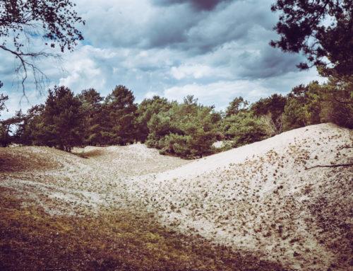 Wycieczki po Polsce: Zespół Przyrodniczo-Krajobrazowy Porzecze – Zachodniopomorskie