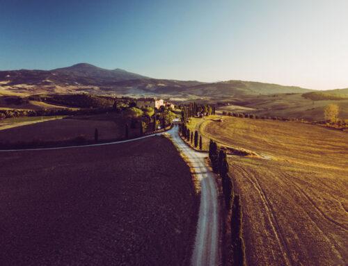 Toskania – Montalcino, Pola Gladiatora, Piza, Florencja w 4 dni + KOSZTORYS
